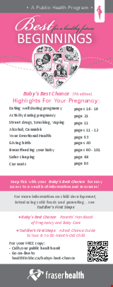 PDF Thumbnail for Best Beginnings: Highlights For Your Pregnancy Bookmark