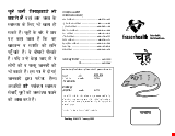 PDF Thumbnail for Rat Prevention and Control