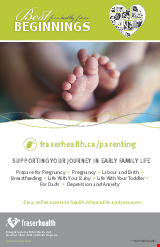 PDF Thumbnail for Best Beginnings - Supporting Your Journey In Early Family Life (Large Poster)