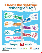 PDF Thumbnail for Use the ER Wisely (Small Poster)