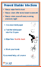 PDF Thumbnail for Prevent Bladder Infections Poster